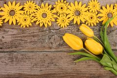 Yellow floral decoration on wooden background. With tulips royalty free stock photography