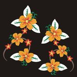 Yellow flower 01. Framework consisting of flowers on a black background graphic design vector illustration