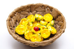 Yellow flower blossoms with ladybug Royalty Free Stock Image