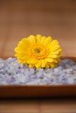 Yellow Flower on Blue Bath Salt Stock Image