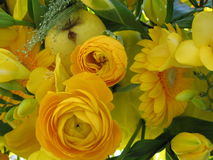 Yellow flower bouquet. Yellow tone flower background wallpaper Royalty Free Stock Photography