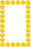 Yellow flower (Cosmos) Stock Image