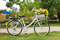Yellow flower on a decorative old white painted bicycle Royalty Free Stock Images