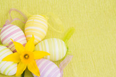 Yellow flower and easter eggs Royalty Free Stock Images