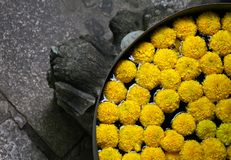 Yellow flower. Floating flower arrangement in bali styled bowl royalty free stock photography