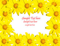 Yellow flower frame. With space for your text isolate Stock Photos
