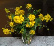 Yellow Flower in a glass vase. Whit brown background on granite stone stock photography