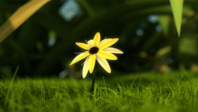 Yellow Flower on Green Grass. A close-up view of a mythical made up yellow flower on a bed of green grass Stock Photos