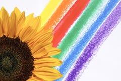 Yellow Flower Illustration royalty free stock image