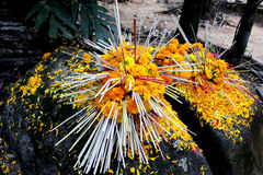 Yellow flower with incense on the rock. In Temple, Thailand Stock Photos