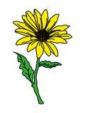1_Yellow flower royalty free illustration