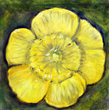 Yellow Flower Painting Stock Photography