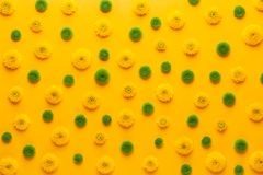 Yellow flower pattern on a yellow background.  Spring greeting card stock photography