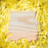 Yellow flower petal on wooden background as frame Stock Photos