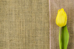 Yellow flower with pink ribbon on linen background Stock Photo