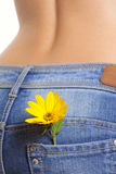 Yellow flower in a pocket female jeans. Removed close up Stock Photos