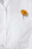 Yellow flower in a pocket. White cotton shirt with a yellow flower in a breast pocket, the minimalistic concept of spring Stock Image