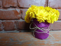 Yellow flower. In a pot Stock Photos