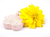 Yellow flower and pumice Royalty Free Stock Photography
