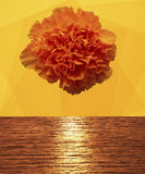 Yellow flower on the seascape Stock Photography
