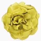 Yellow flower of silk Stock Photos