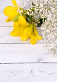 Yellow flower space and valentine day Royalty Free Stock Photos