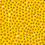 Yellow flower. Summer yellow flowers Stock Photography