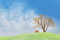 Yellow flower tree on green hill Stock Image
