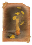 Yellow flower in vase - vintage effect Royalty Free Stock Photography
