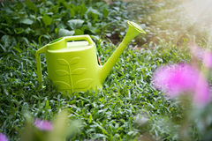 Yellow flower watering can Royalty Free Stock Image