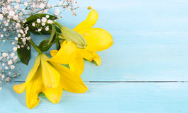 Yellow flower and white space blue wood background. Yellow flowers Concept and Decoration royalty free stock image