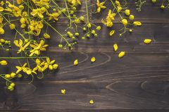 Yellow flower on wooden background with space with vintage toned Royalty Free Stock Photography