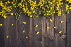 Yellow flower on wooden background with space with vintage toned Stock Image