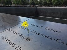 Yellow flower on World Trade Center Memorial pool. August 2015 royalty free stock photo