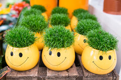 Yellow flowerpots with smilie and green grass Royalty Free Stock Images