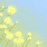 Yellow flowers. Background illustration Royalty Free Stock Images