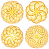 Yellow Flowers. Set of stylized yellow flowers (combinable at will Stock Images