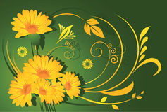 Yellow flowers. Inside Floral designs Royalty Free Stock Photo