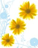 Yellow flowers. On abstract blue background vector illustration