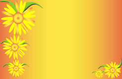 Yellow Flowers. Yellow flower background Royalty Free Stock Photography