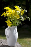 Yellow flowers. In a white vase. Shallow d o f Royalty Free Stock Images