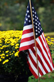 Yellow Flowers with American Flag royalty free stock photo