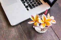 Yellow flowers beautiful Frangipani in small glass simply decora Stock Photography