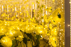 yellow flowers with bokeh abstract, x& x27;mas Stock Photography