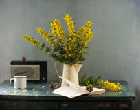 Yellow flowers and book Royalty Free Stock Photography