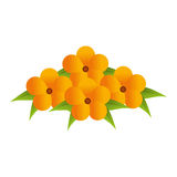 Yellow flowers bouquet floral design with leaves Royalty Free Stock Photography