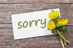 Sorry. Yellow flowers and card with lettering sorry stock photography