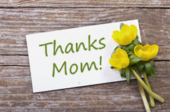 Thanks mom. Yellow flowers and card with lettering thanks mom Royalty Free Stock Photo