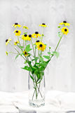 Yellow flowers. Royalty Free Stock Photo