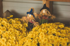 Yellow flowers with cute scarecrows. In a country store Stock Photo